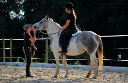 Welche Persönlichkeit hat mein Pferd?