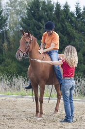 Üben als Weg – Wie das Arbeiten mit dem Pferd unser Wesen verwandelt