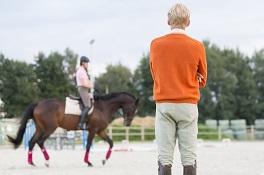 Ausbildung und Trainer passend für mich und mein Pferd