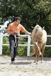 Der gemeinsame Nenner für Pferd und Reiter