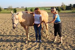 Chi horsing