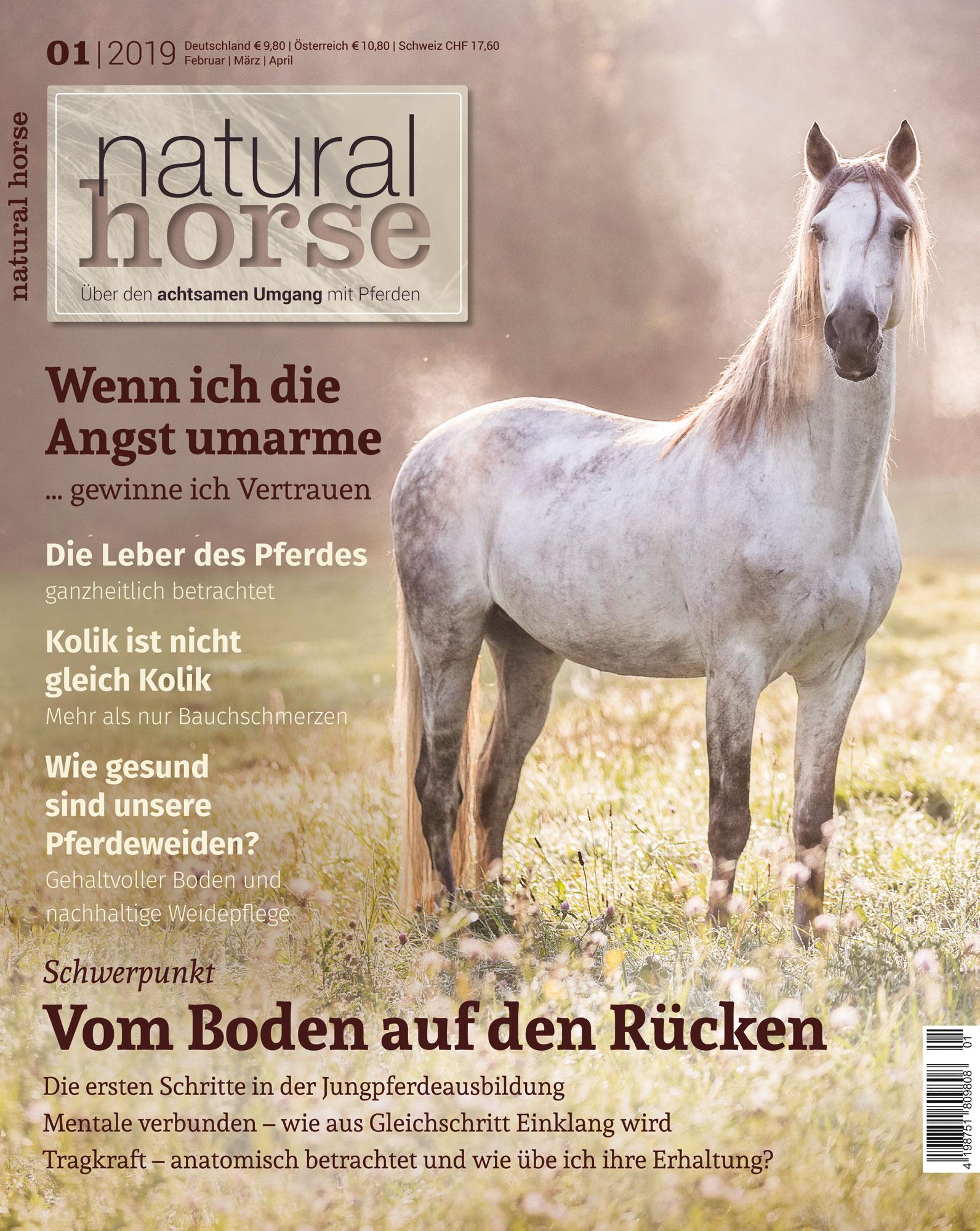 Natural Horse 23 01/2019
