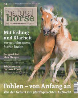 Natural Horse 18 - 01/2018