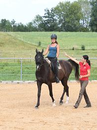 Gute Ausbildung = sicheres Pferd
