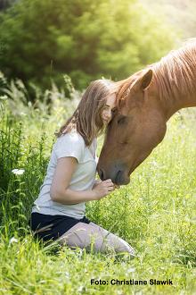 Traumaheilung mit Pferden