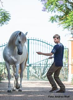 Über- oder Unterfordern wir unsere Pferde?