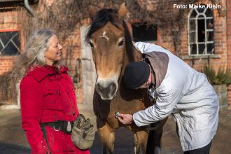 Medical Training: Wenn der Tierarzt kommt