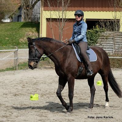 Natural Horse 35 03-2021 Denk mal neuro! Fitteres Gehirn = besseres Reiten