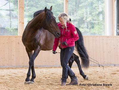 Natural Horse 35 03-2021 Mit dem Flüstern der Pferde die eigenen Potenziale entfalten