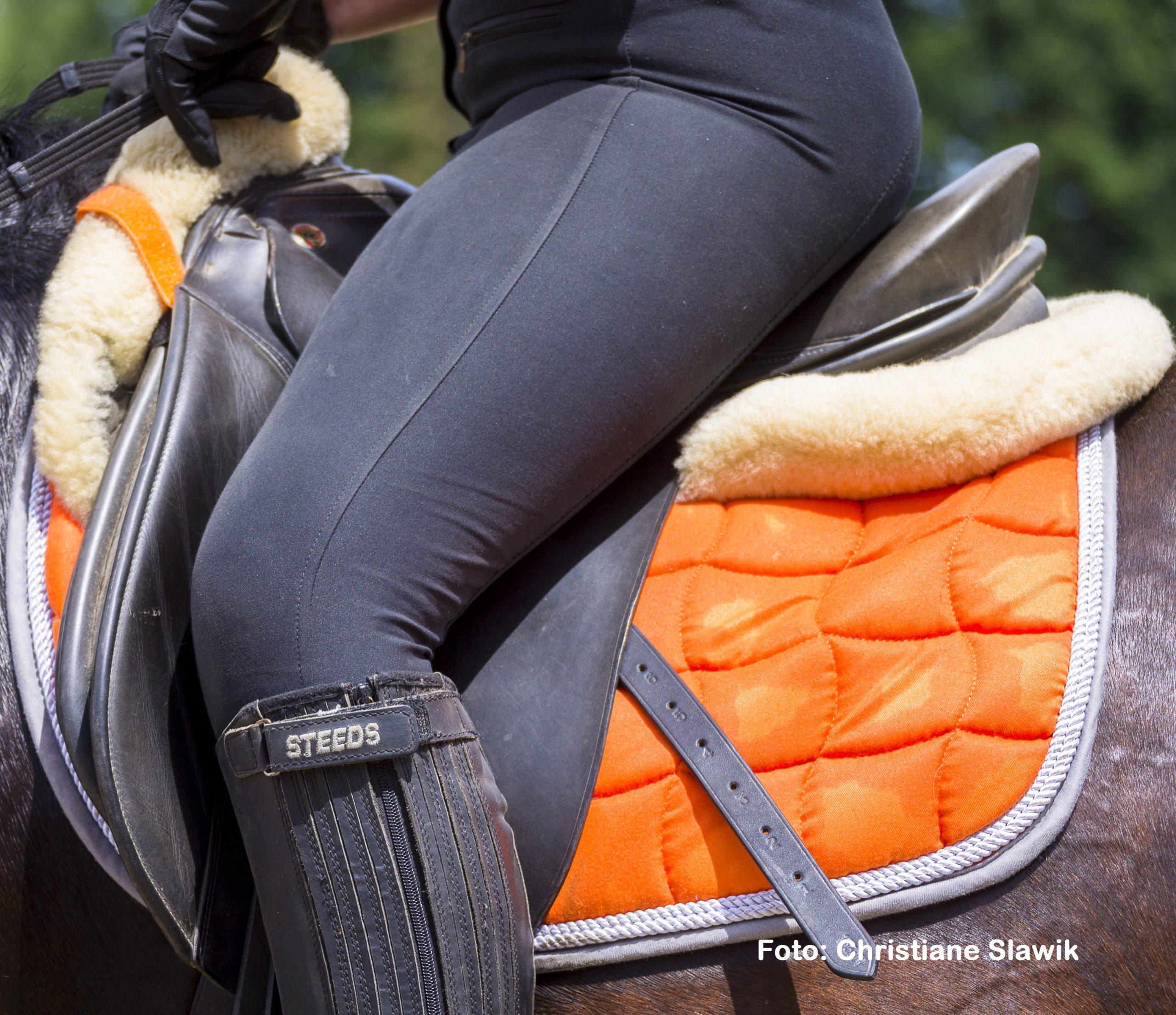 Natural Horse 35 03-2021 Plastik - ein Lebenslauf Kunststoffe rund ums Pferd